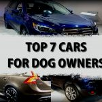 Top 7 Cars For Dog Owners To Consider When Buying A Car