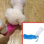 Buy Portable Dog Water Bowl